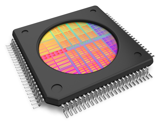 Microchip with visible die