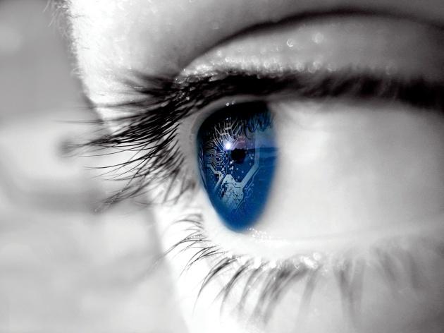 ojo chip 3