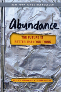 Abundance the Book